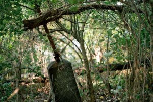 Cmentarz w Kramniku, wrzesień 2003